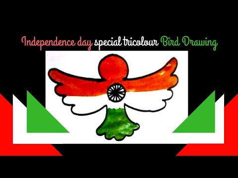 Independence Day Special Drawing | Independence Day Tricolour Bird Drawing for Kids step by step