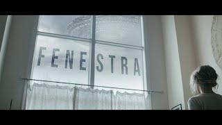 Fenestra