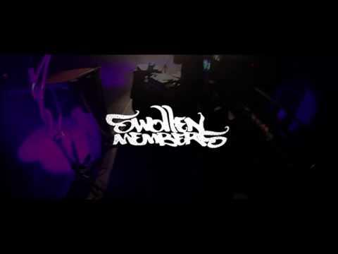 Swollen Members - Red Dragon (Live in Sydney, Nova Scotia)