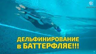Как научиться плавать баттерфляем?! Основы: работа ног и дельфинирование