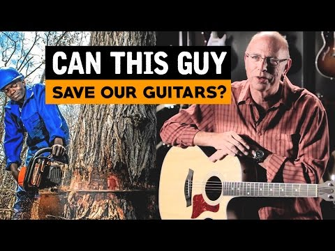 Can THIS Guy Save Our Guitars? Bob Taylor Interview