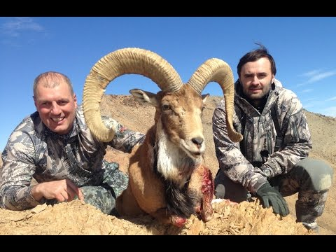 Hunting in Iran www.hunting.az
