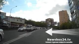 На улице Котельникова черная кошка перешла автомобилистам дорогу согласно ПДД