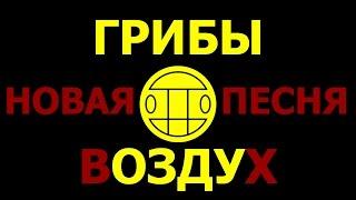 ГРИБЫ - ВОЗДУХ | НОВАЯ ПЕСНЯ! | ХАРЬКОВ | РАДМИР | LIVE!