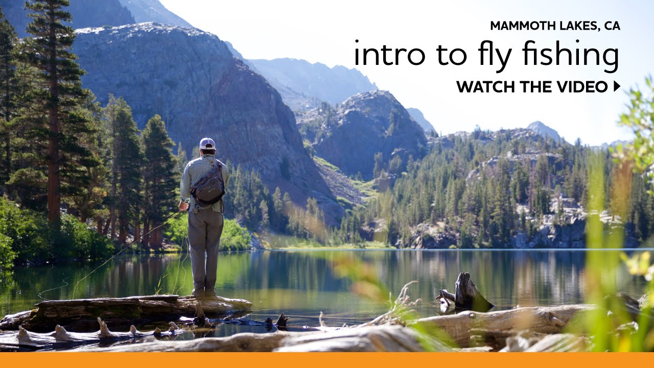 Beginner 39 s guide to fly fishing in the eastern sierra for Eastern sierra fishing
