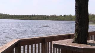 CALEDON ONTARIO - WATERFRONT COTTAGE ON PRIVATE LAKE FOR SALE