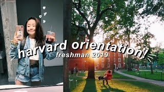 my college orientation messy  harvard freshman 2019