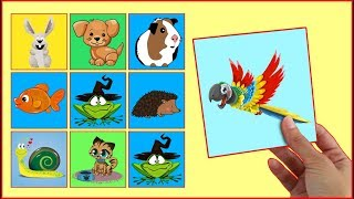 LEARN COLORS With Pets Animals Interactive Game Cards Toy PEXESO #11