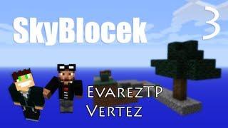 Minecraft: SkyBlocek #3 - Abstrakcyjny domek - Vertez & EvarezTP
