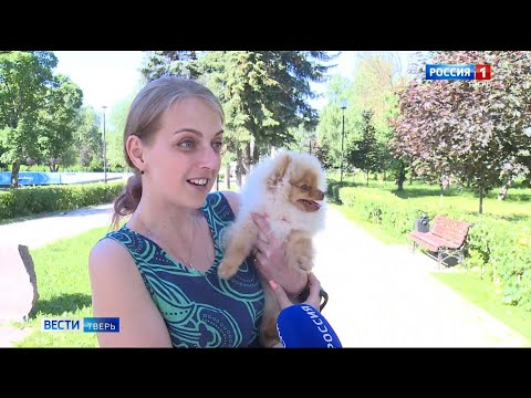 Как животным пережить жару | Вести Тверь