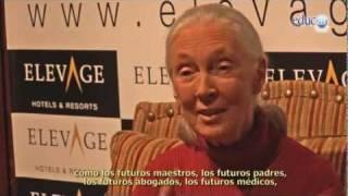Jane Goodall y el futuro de los animales -Plataforma Cuenta Regresiva-