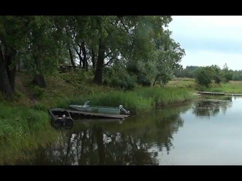 Прогноз клева на неделю в Торопец, рыбалка в Торопец Тверская область, Россия