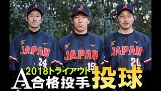 A合格投手 蓬来康太,佐藤颯,大原脩司  2018 SWBC JAPAN軟式野球日本代表候補