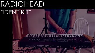 Radiohead - Identikit (Cover by Joe Edelmann)