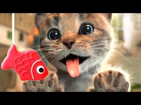 Lindo Gatito Aventuras Educativo Juegos Para Niños - Dibujos Animados Infantiles | ArcadeG
