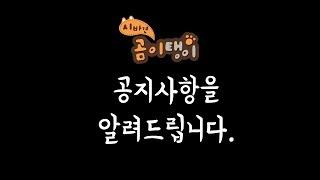 [알림] 시바견 곰이탱이 팬미팅, 시바의 하루 싱글앨범 발표 일정 공지합니다.