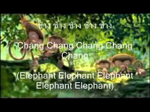 AdayThai: Pleng Chang - Elephant Song