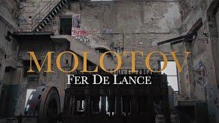 Baixar Fer De Lance - Molotov feat. Dj Moya