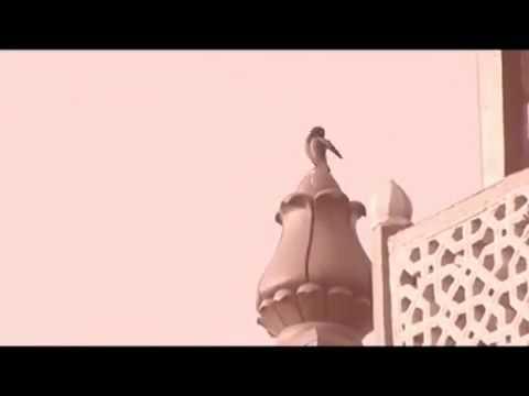 Shahid Abdul Malek full documentary