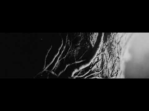 LUSTRE - The Ashes Of Light (Official Album Trailer 2020)