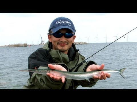Fishing With Rod: Lure Fishing For Garfish