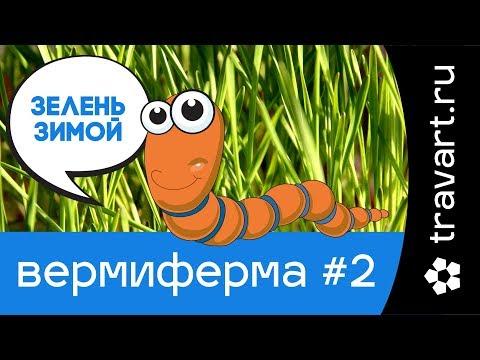 Продукты питания в Перми: Интернет магазины продуктов