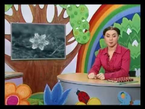 Шишкина школа   видео-уроки скачать бесплатно.