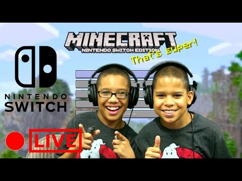 Minecraft Live Gameplay Playing with Viewers Twin Challenge Gaming Nintendo Switch