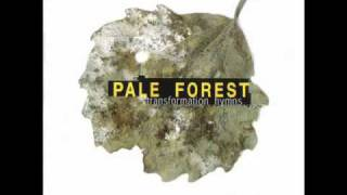Watch Pale Forest Nothing Left video