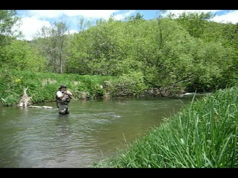 Trout fishing west fork kickapoo river wisconsin youtube for Trout fishing wisconsin