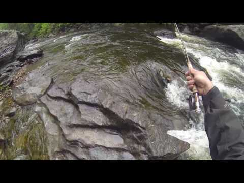 Vermont Stream Fishing