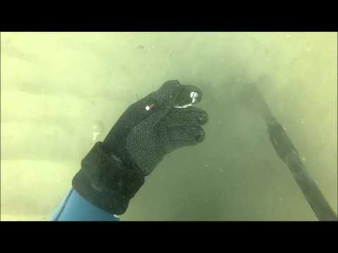 Last Scuba Dive while Metal Detecting for 2015