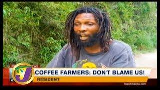 TVJ News: Coffee Farmers: Don't Blame us! - October 14 2019