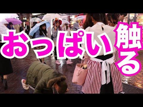 渋谷の女に土下座して『おっぱい』触せろと懇願したら触らせてくれるんじゃね?触るまで帰りません!