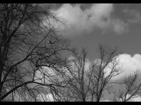 Mad World - Piano Version by Marius Furche