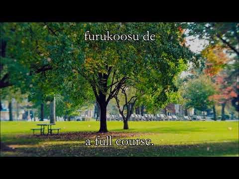 Kataomoi - Aimer - lyrics + sub eng
