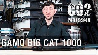 Gamo Big Cat 1000, установка газовой пружины, замена манжеты, стрельба через ''хрон''