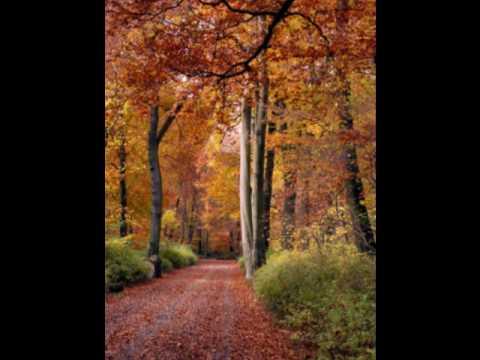 SERGEY DUBROFF  Schumann: Dichterliebe Op. 48 3. Die Rose, die Lilie
