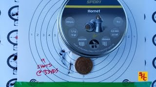 Pest Control with Air Rifles - Squirrel Shooting - Hornet .22