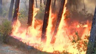 Des incendies ravagent le sud de la Turquie, des touristes et habitants évacués