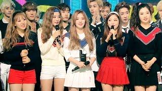《Inkigayo WIN》 인기가요 1위 발표|레드벨벳(Red Velvet) - Dumb Dumb(덤덤) 20150920