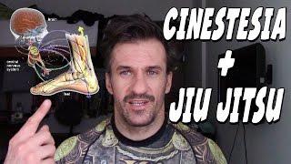 Baixar Jiu Jitsu - Você sabe o que é Cinestesia ?