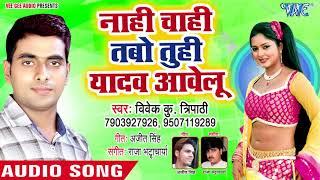 Nahi Chahi Tabo Tuhi Yaad Aawelu - Saiya Puwara Pa Sutela - Vivek Kumar Tripathi - Bhojpuri Songs