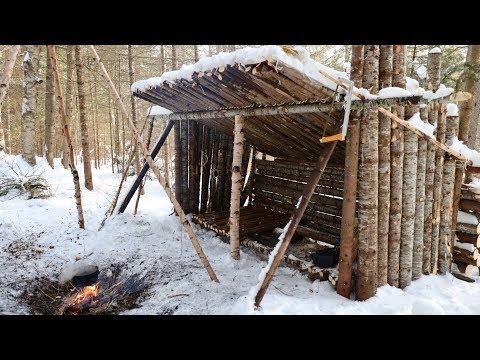 Surviving  24 hours in a Primitive Survival Shelter!
