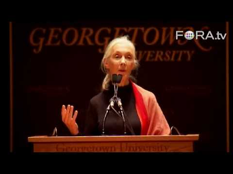 Jane Goodall: There Is Still Hope for the Environment