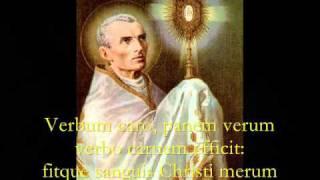 Gambar cover Pange Lingua Gloriosi - Catholic Hymns, Gregorian Chant