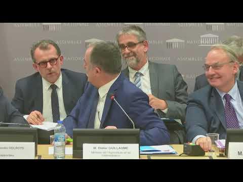 Audition de Didier Guillaume, ministre de l'Agriculture