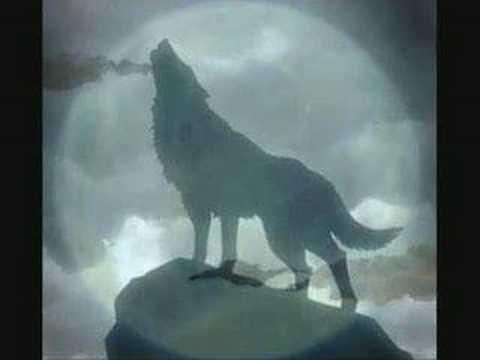 Paul Winter - Wolf Eyes