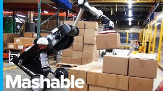 Boston Dynamics Robot is Now a Warehouse Worker thumbnail