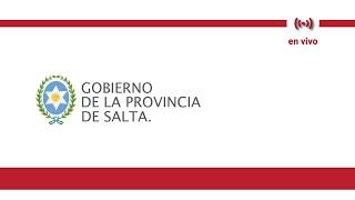 Video: Asumieron los ministros que acompañan al gobernador Gustavo Sáenz